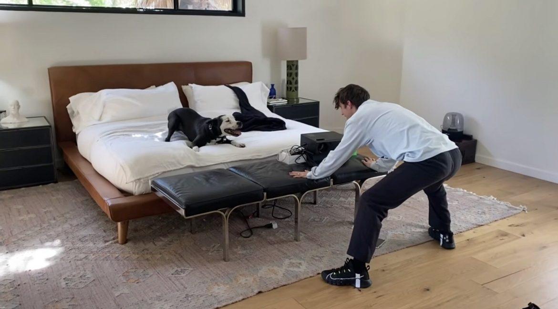 Must watch: Troye Sivan sorprende a su perro después de estar separados por 7 meses